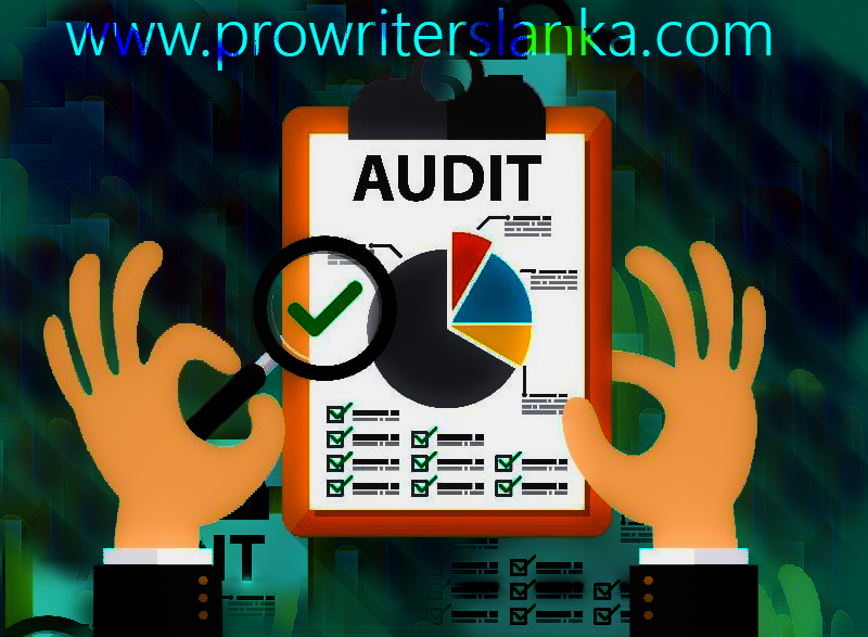Quality Audit Systems